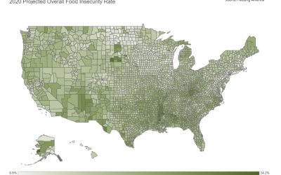 Food Insecurity Effects Education and Employment