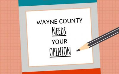 Make Wayne County a Better Place in Five Minutes