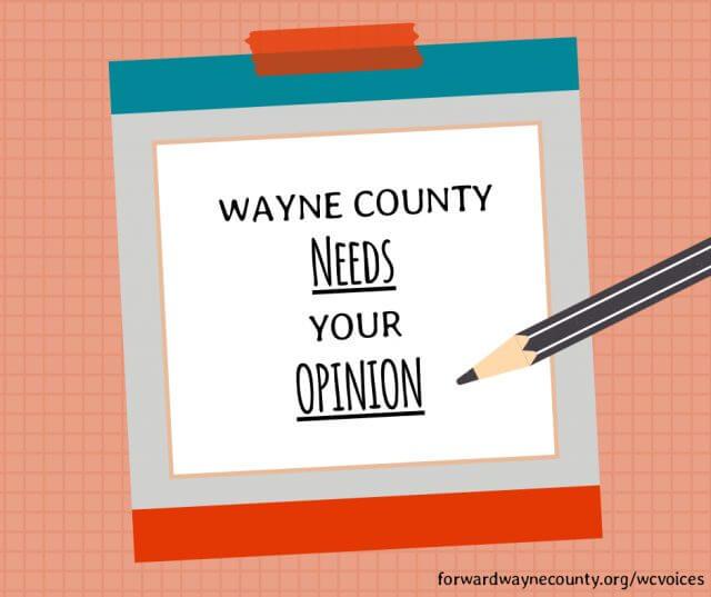 Wayne County Survey